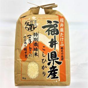 福井産 越前武生のこしひかり 5kg 01