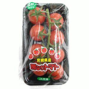 宮崎産 房なりトマト 1パック 01